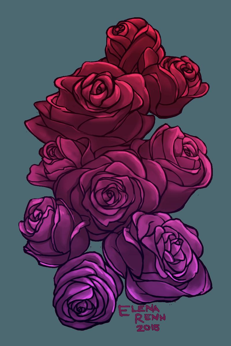 Drawn red rose purple rose Elena rose drawing flowers painting
