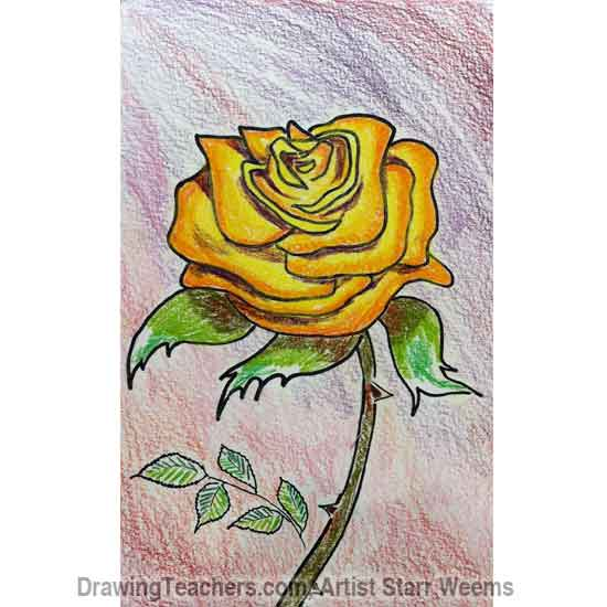 Drawn red rose purple rose 6 How Draw Roses to