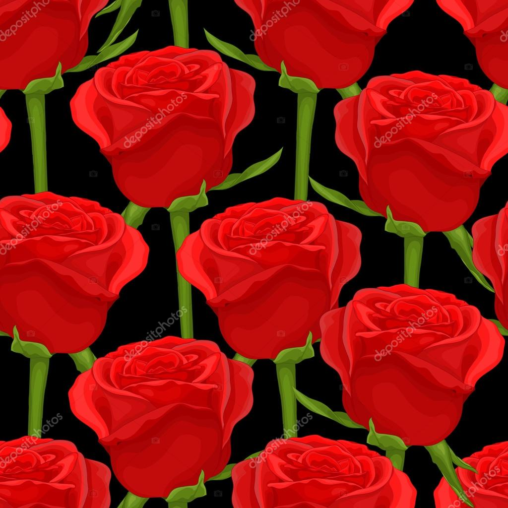 Drawn red rose real rose On roses red background Hand