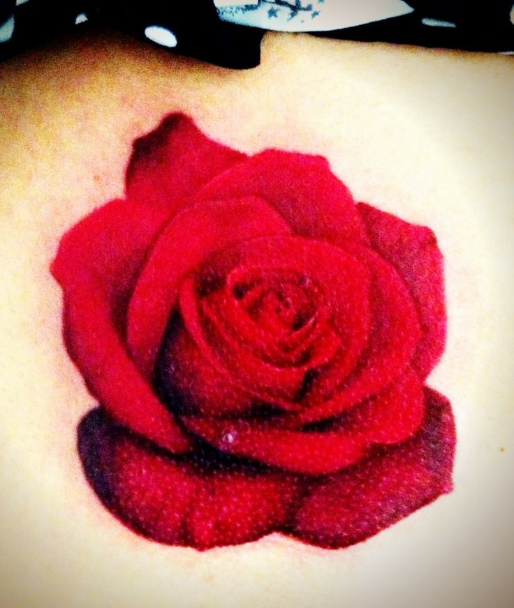 Drawn red rose realistic Realistic tattoo 20+ 3d newest