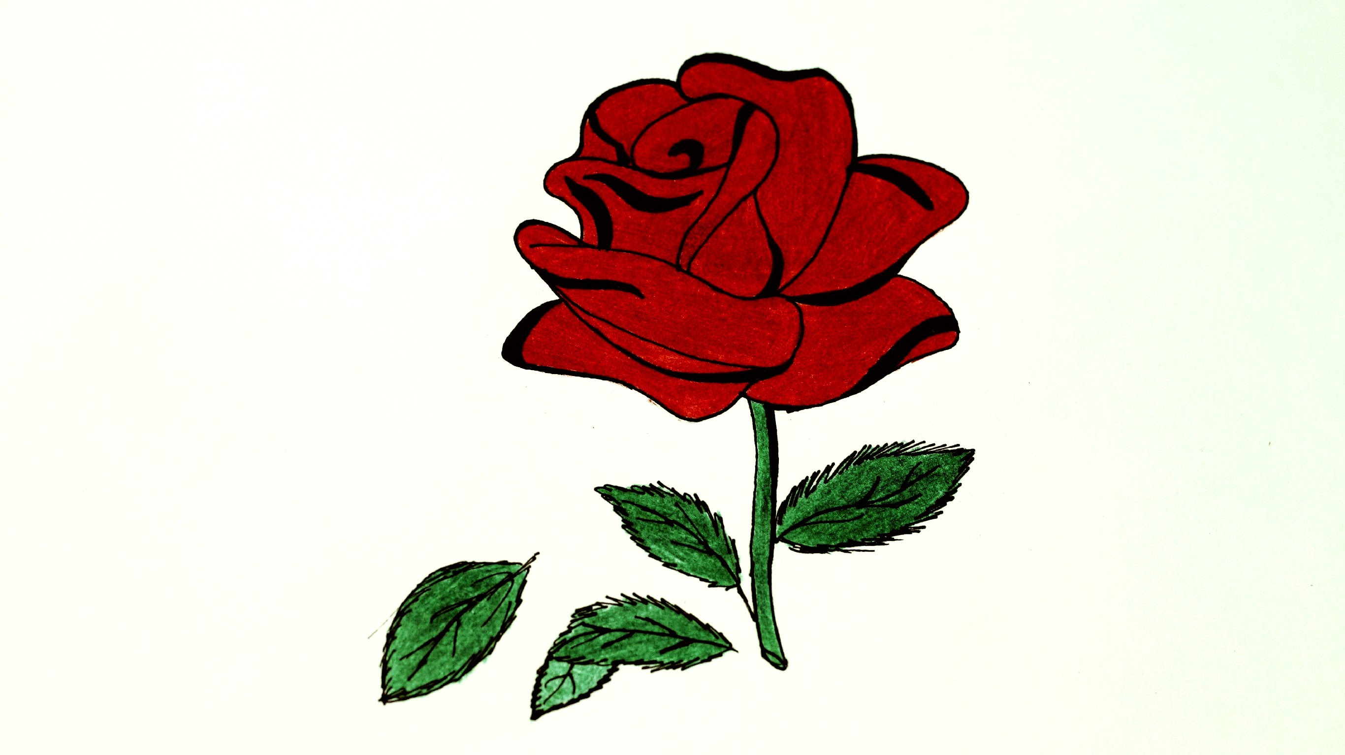 Drawn red rose ribbon drawing How लाल Rose Unsubscribe