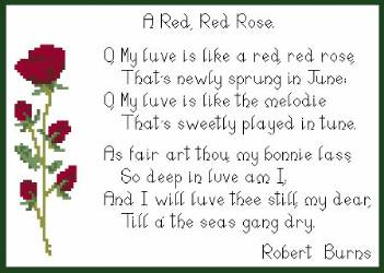 Drawn red rose robert burns Of verses Castles much Another