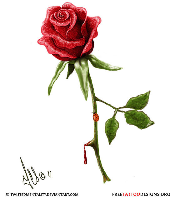 Drawn rose simple realism Blood One  other the