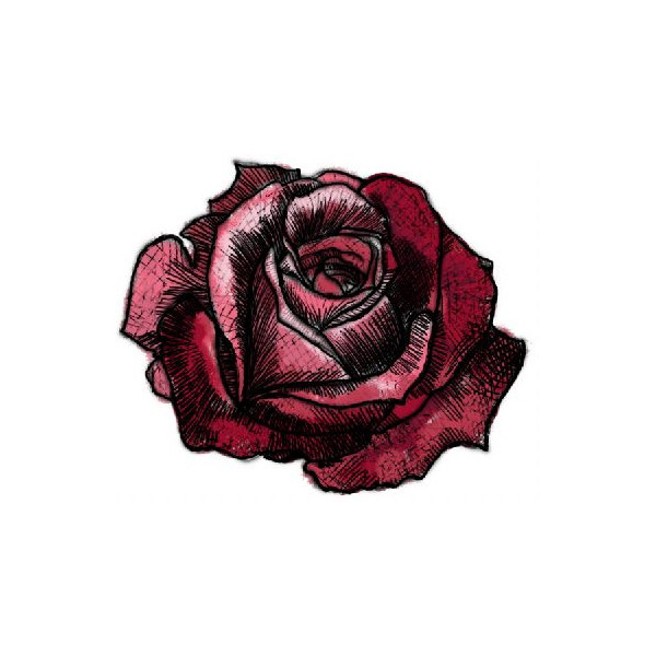 Drawn red rose shaded Rose backgrounds rose liked fillers