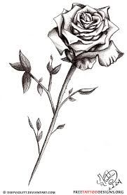 Drawn red rose small Images on Tattoos best