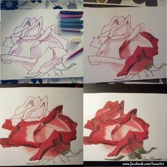 Drawn red rose soft pastel Cm)  7 and (21*29