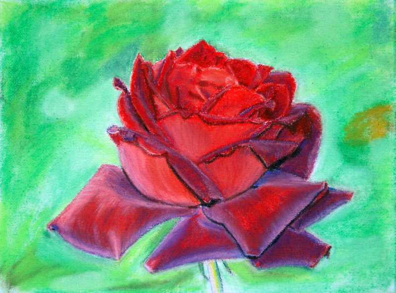 Drawn rose soft pastel Hobby A4 Artistic Rose Maria