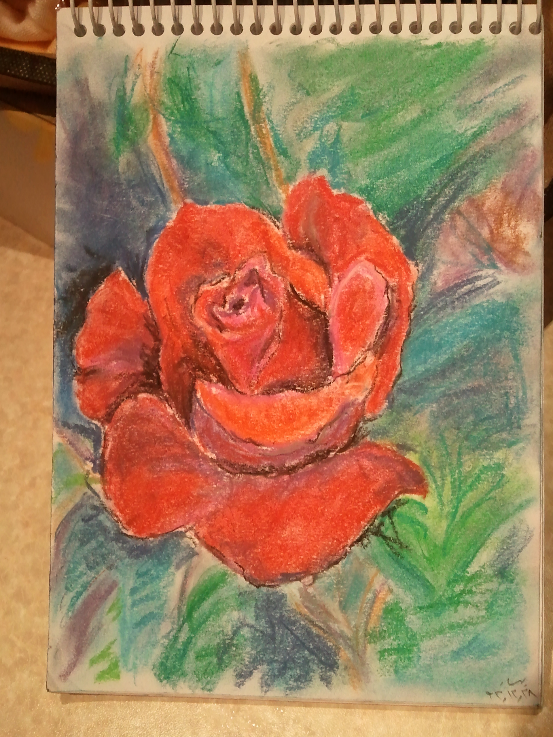 Drawn red rose soft pastel  rose and red a
