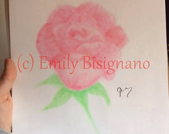 Drawn red rose soft pastel Minimalst flower roses rose Etsy