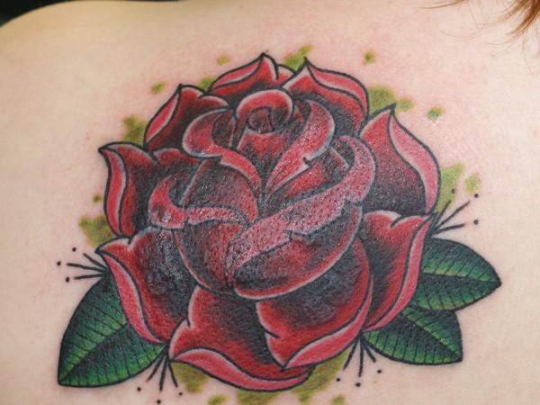 Drawn red rose stalk Red Designs Tattoo Women 61