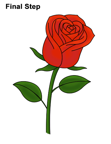 Drawn red rose stalk How Draw Draw Red to