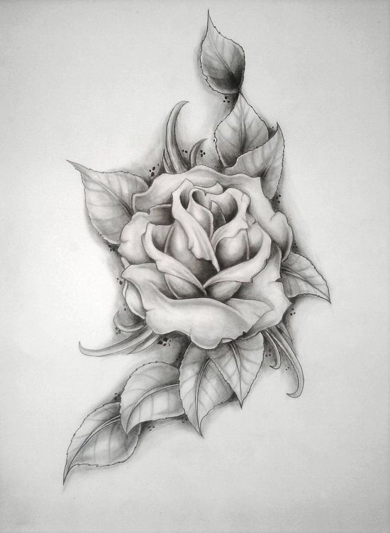 Drawn red rose stem thorn Drawing want Tattoo: one on