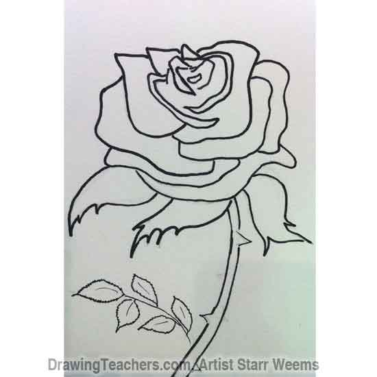 Drawn red rose stem thorn Roses to How Draw 4