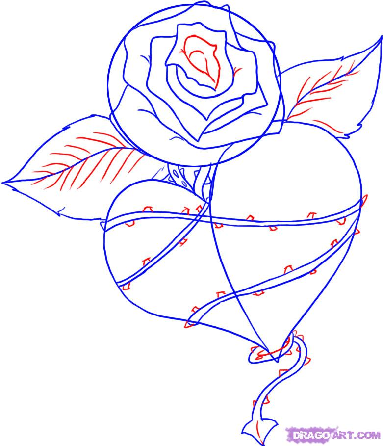 Drawn red rose stem thorn Tattoos a to a