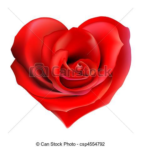 Drawn red rose valentine rose Heart valentine red of rose