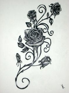 Drawn red rose vine drawing  and by red of