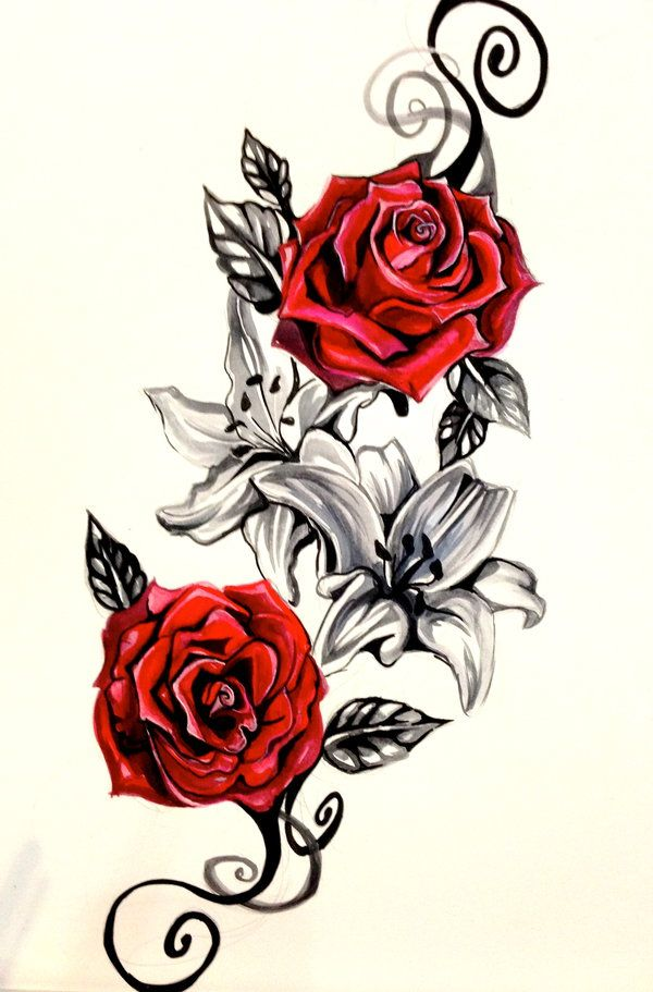 Drawn red rose vine drawing Ideas Lily Best Lucky978 Rose