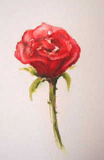 Drawn red rose watercolor Red painted dark I hand