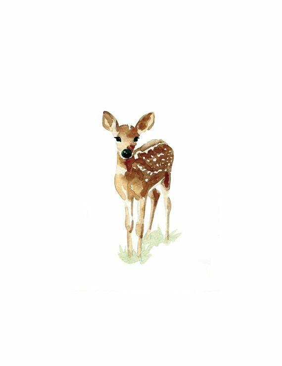 Drawn reindeer baby Watercolor ideas Baby illustration Deer