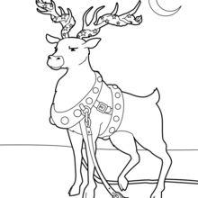 Drawn reindeer christmas coloring page Reindeer page Kids Kids coloring
