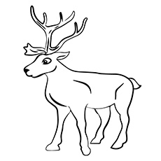 Drawn reindeer colouring page Top Coloring Reindeer A Pages
