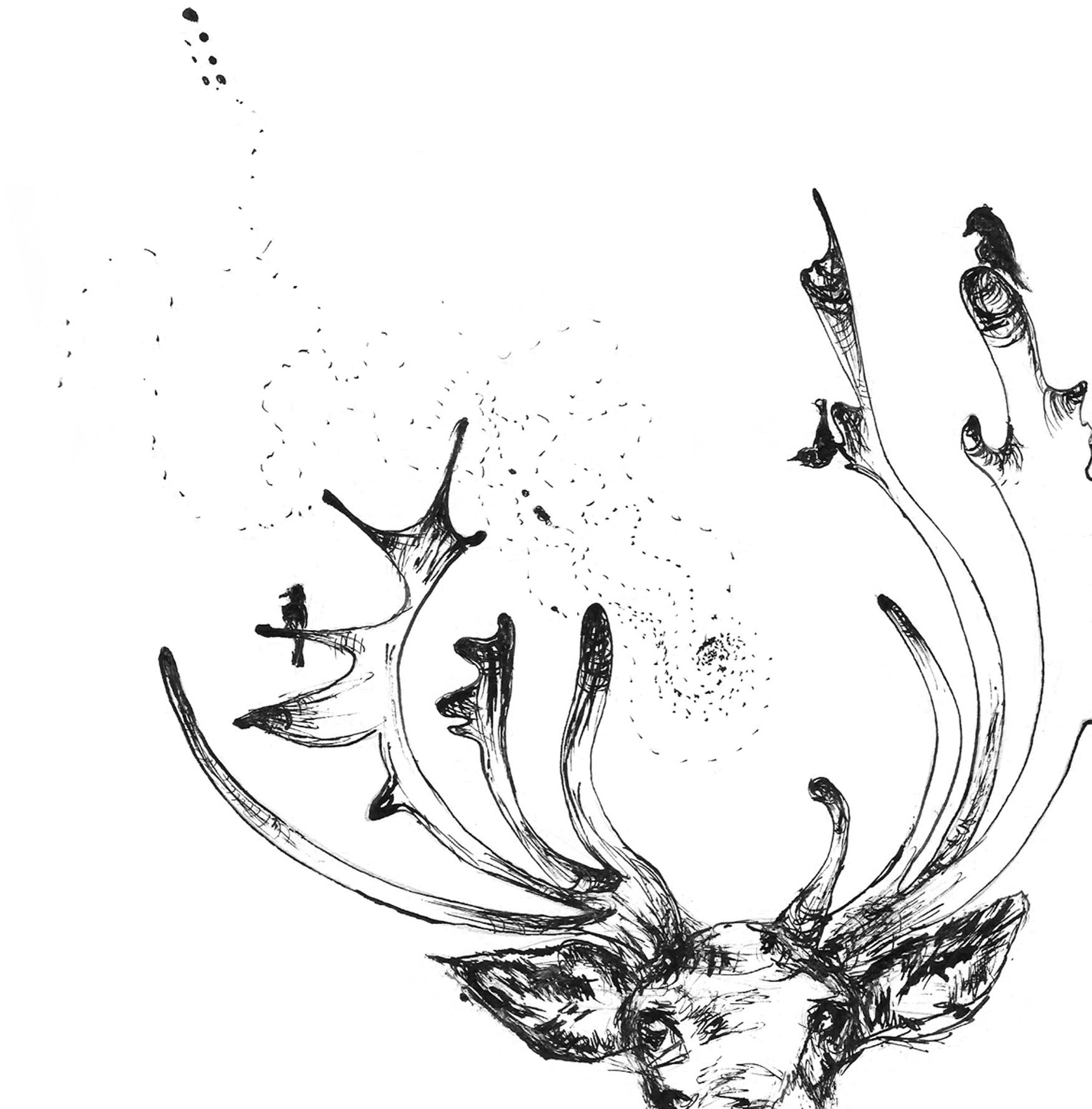 Drawn reindeer face Reindeer reindeer what The now