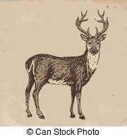 Drawn reindeer illustration Reindeer drawn of 682