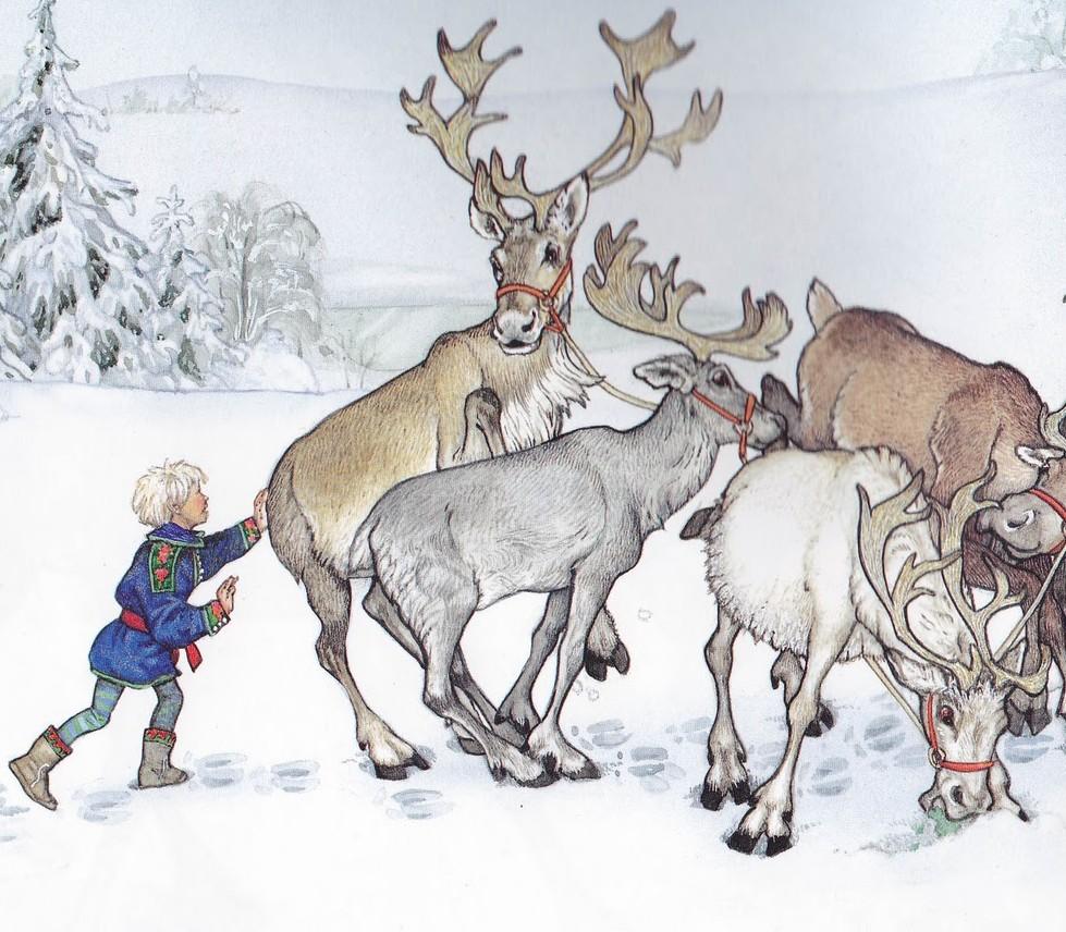 Drawn reindeer jan brett Class: without Christmas Wild A