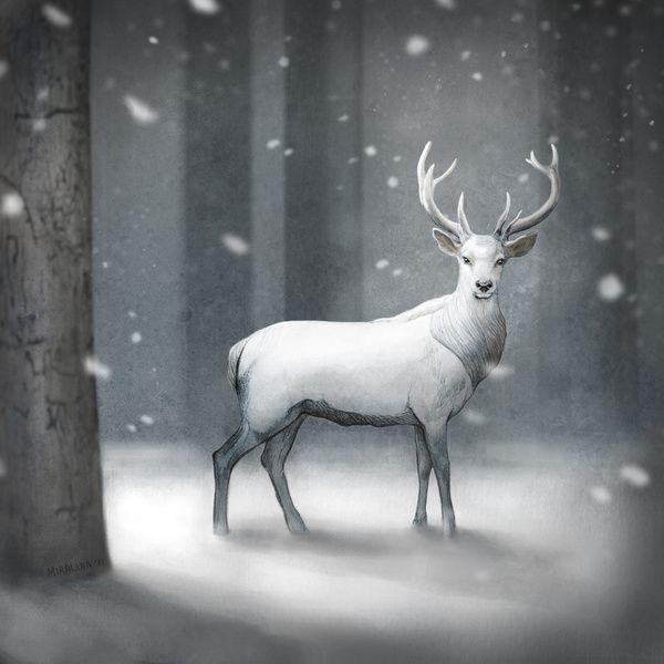 Drawn reindeer majestic On Stag White White Print