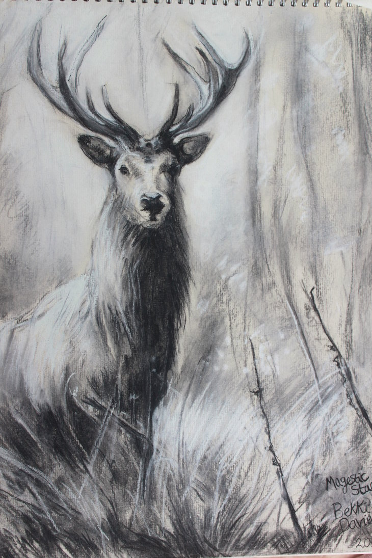 Drawn stag majestic Majestic by Majestic DeviantArt Stag