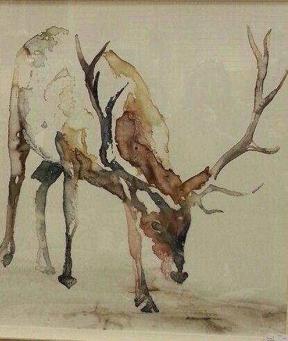 Drawn reindeer majestic ötlet Big A Majestic következővel