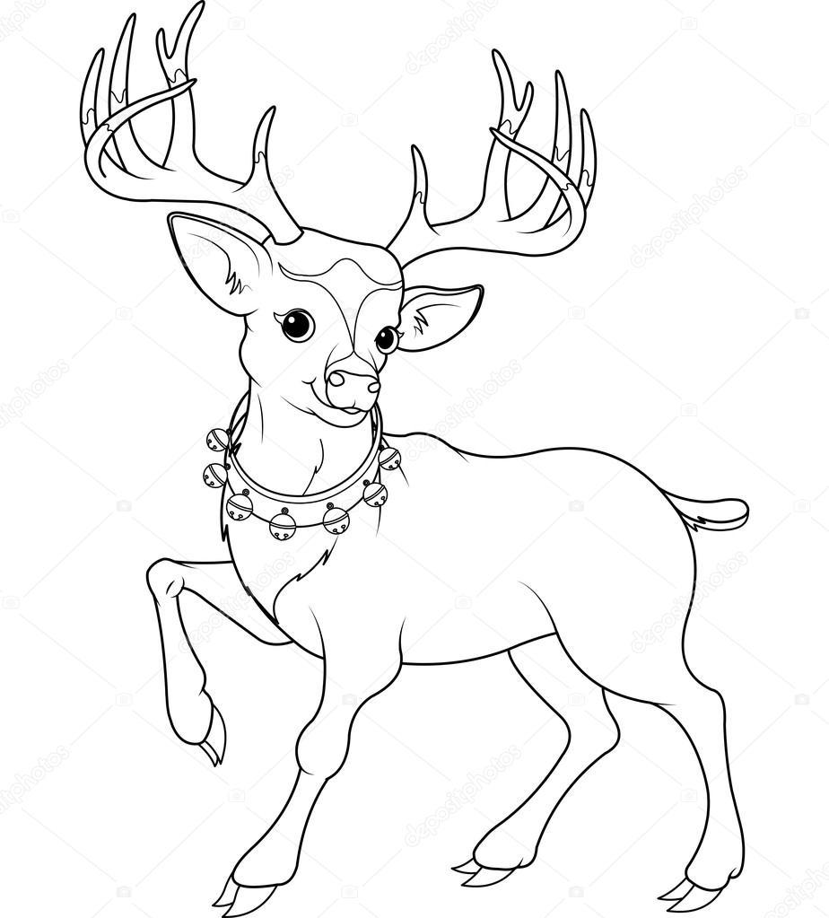 Drawn reindeer rudolf Stock reindeer of Coloring Vector