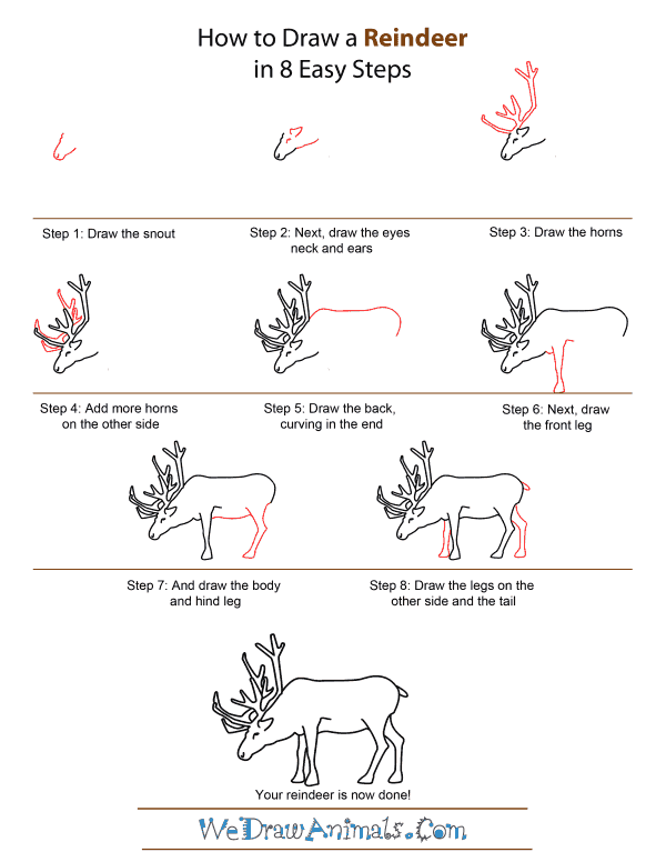 Drawn reindeer step by step A Draw A To by