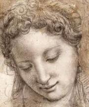 Drawn rennaisance Michelangelo Leonardo  Renaissance Raphael