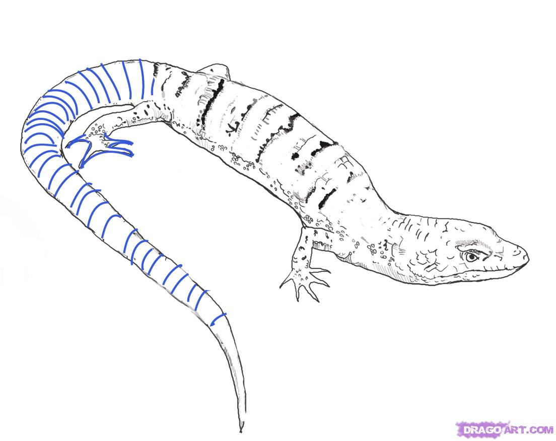 Drawn reptile To Reptiles a step Online