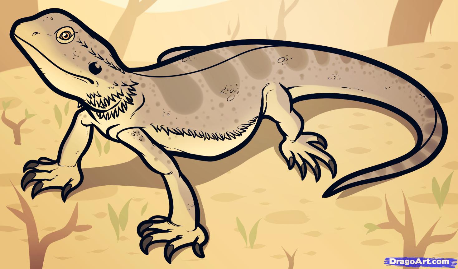 Drawn reptile bearded dragon To Tattoos Bearded Dragon How