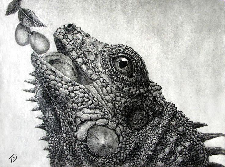 Drawn reptile buzzard On iguana deviantart images Drakonessa