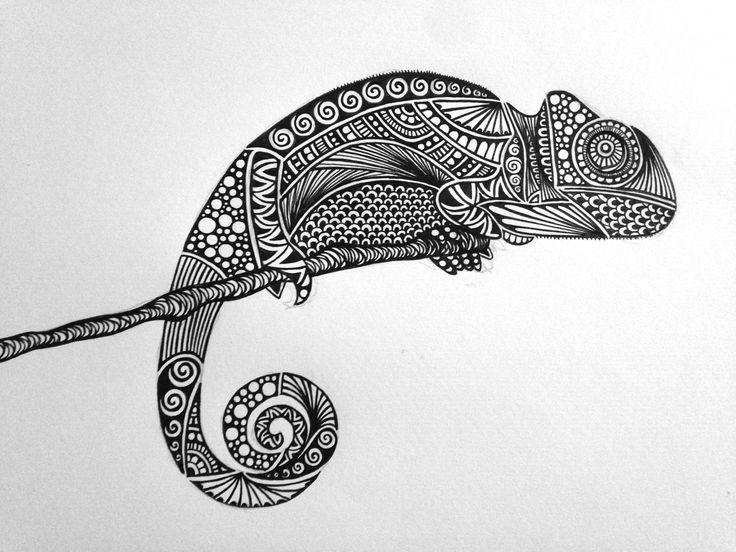 Drawn reptile buzzard Reptile best images mandala on