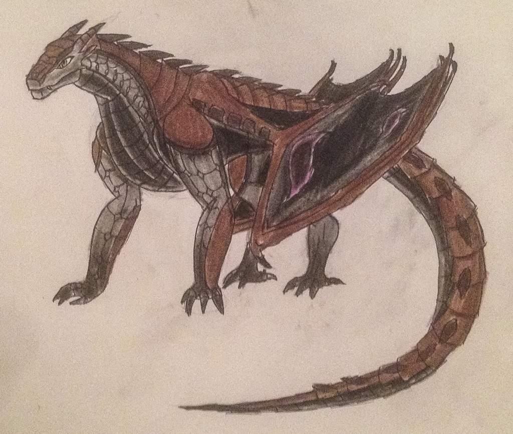 Drawn reptile buzzard Wings me) Fire hybrid Amino