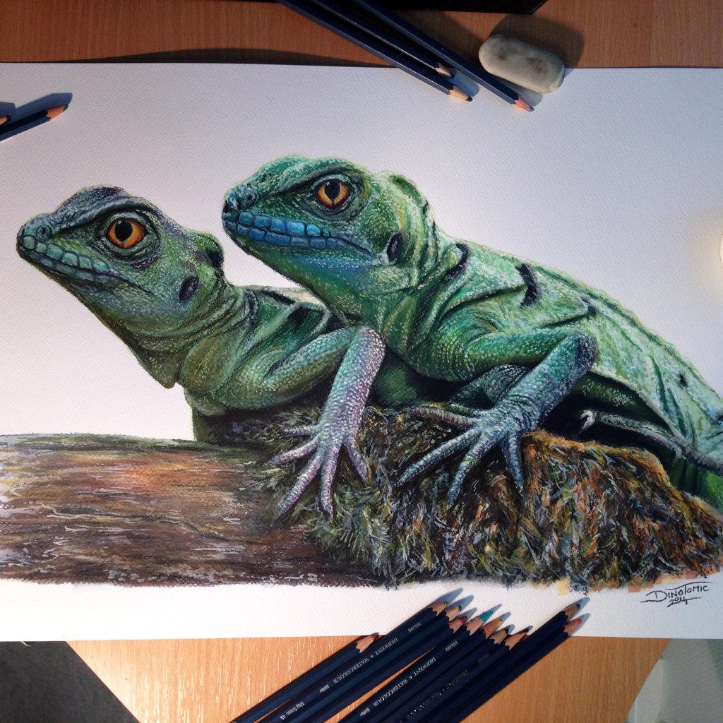 Drawn reptile chinese water dragon Deviantart AtomiccircuS Chinese water Pencil