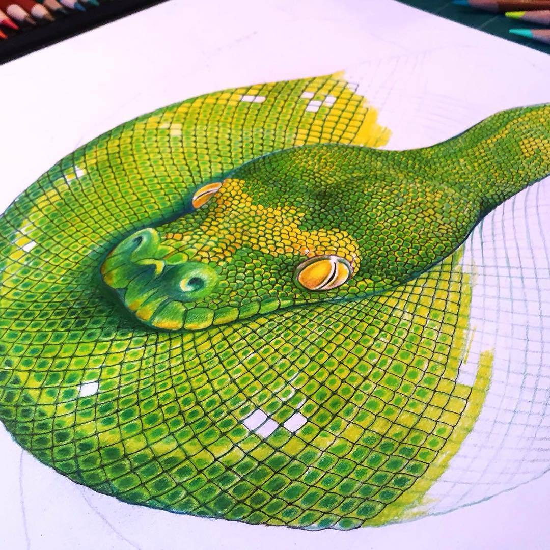 Drawn reptile colorful To Tree awesome More Green