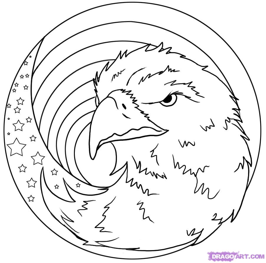 Drawn reptile eagle head front 7 to Step Culture Step