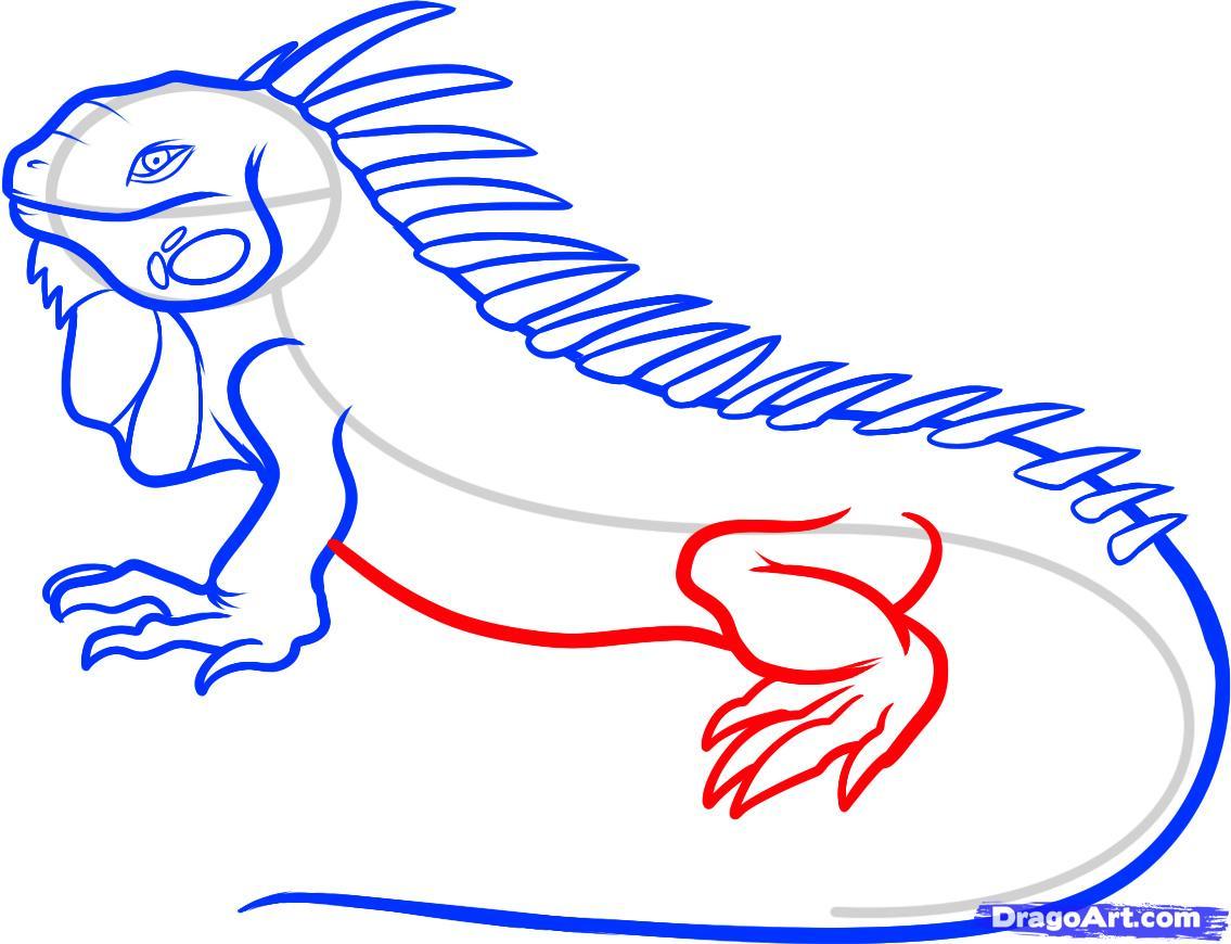 Drawn reptile easy Reptiles draw an  iguana