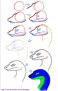 Drawn reptile face How  trans to head