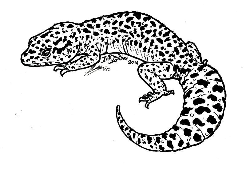 Drawn reptile gecko Kay by DeviantArt day 3