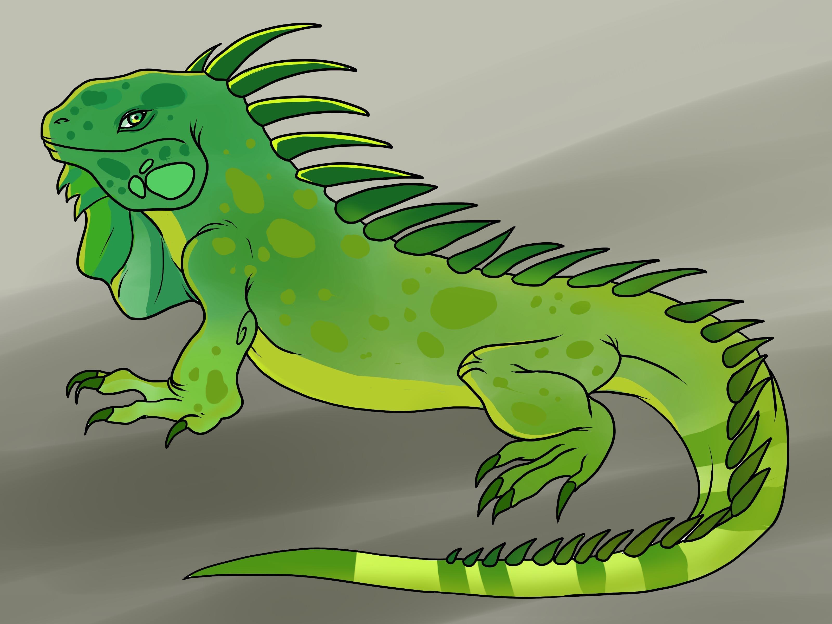 Drawn reptile iguana Iguana How wikiHow to an