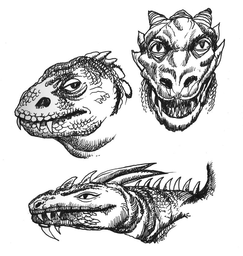 Drawn reptile lizard head By Faces Lizard Lizard Art