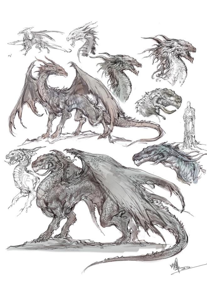 Drawn reptile lizard head #wyvern  #heads #body #anatomy