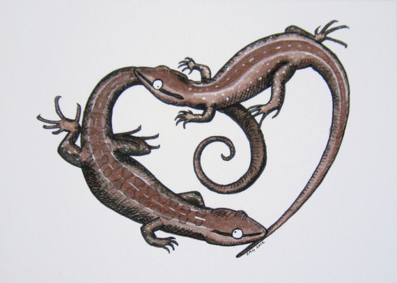 Drawn reptile lizzard Archival  Art Print Etsy