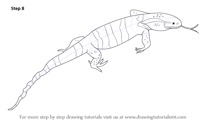 Drawn reptile monitor lizard And touch Step Complete to